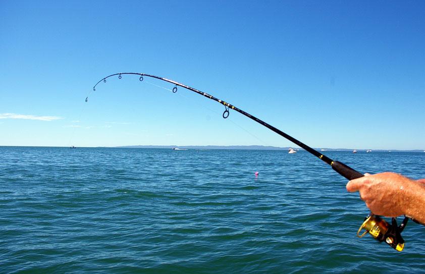 Рыбалка в Алгарве