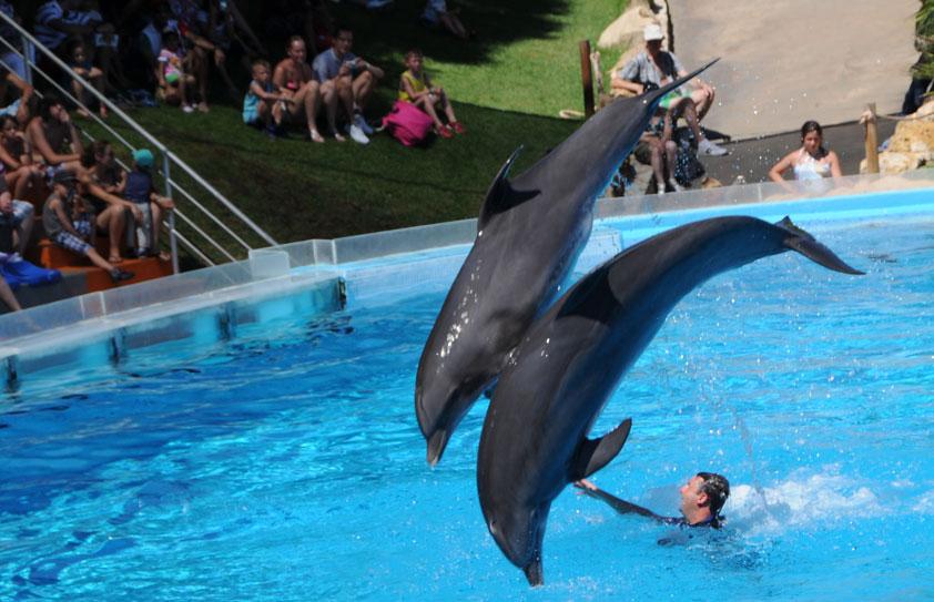 Zoos en Algarve