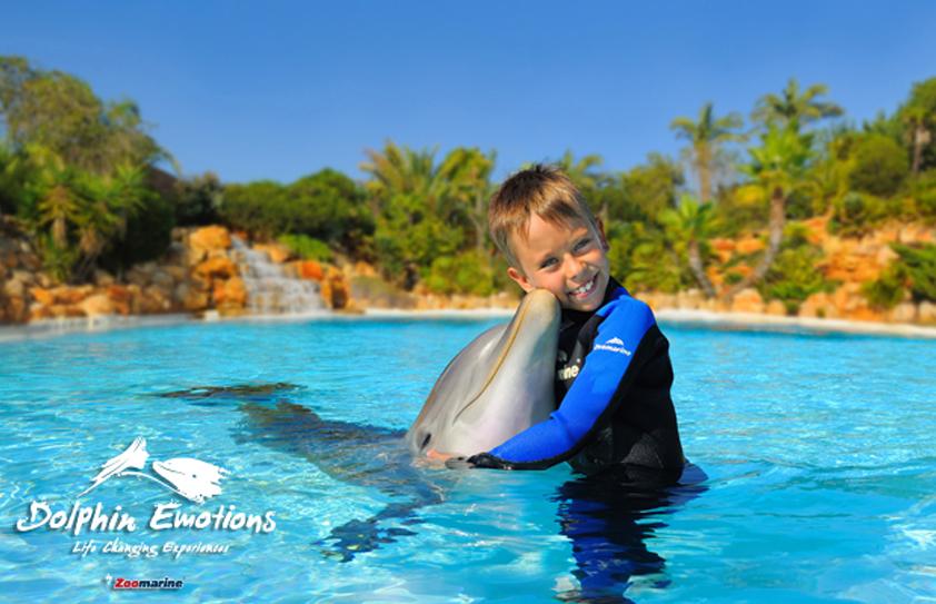Algarve Zoomarine Dolphin Emotions