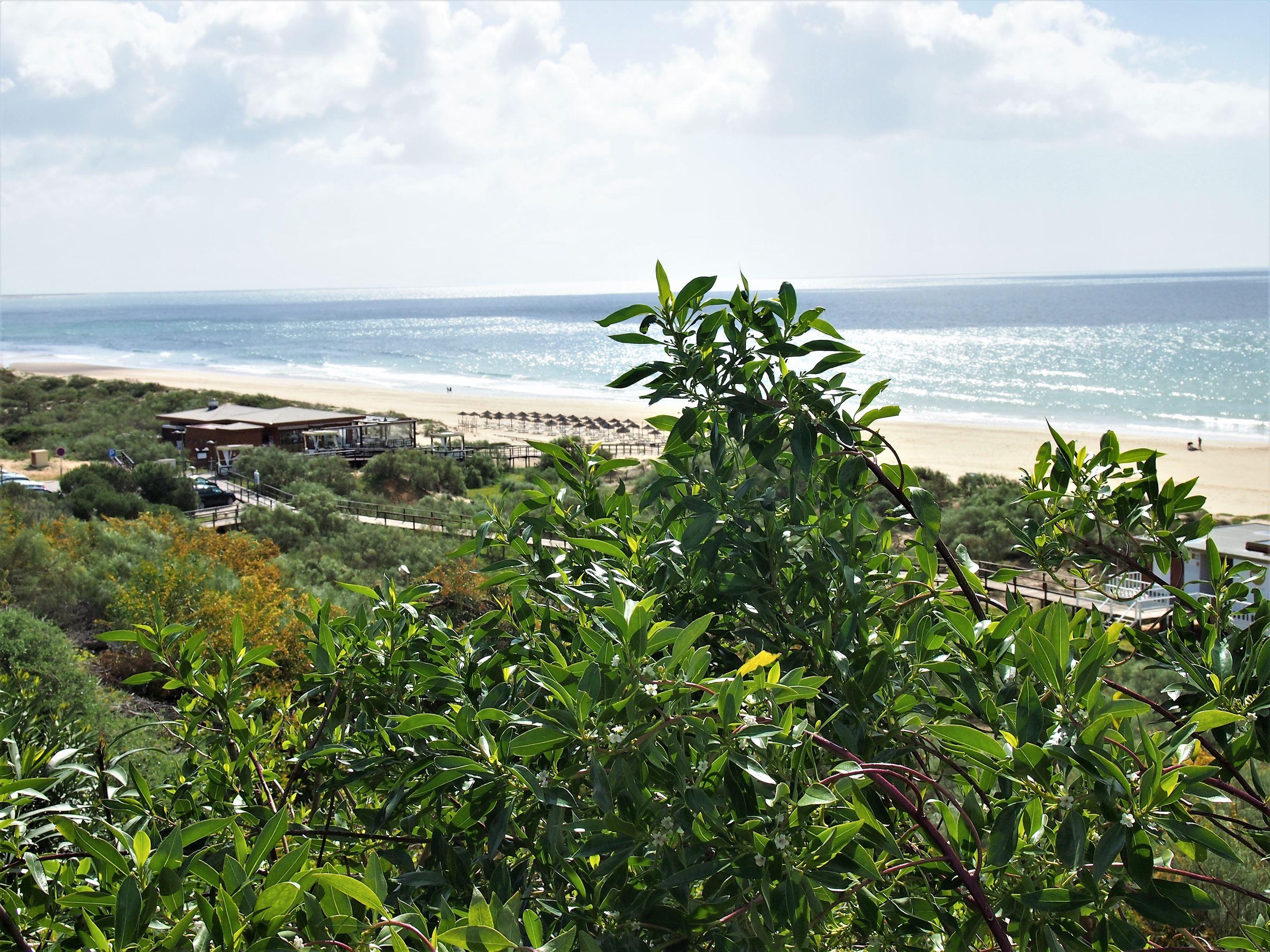 Praia Verde, Castro Marim