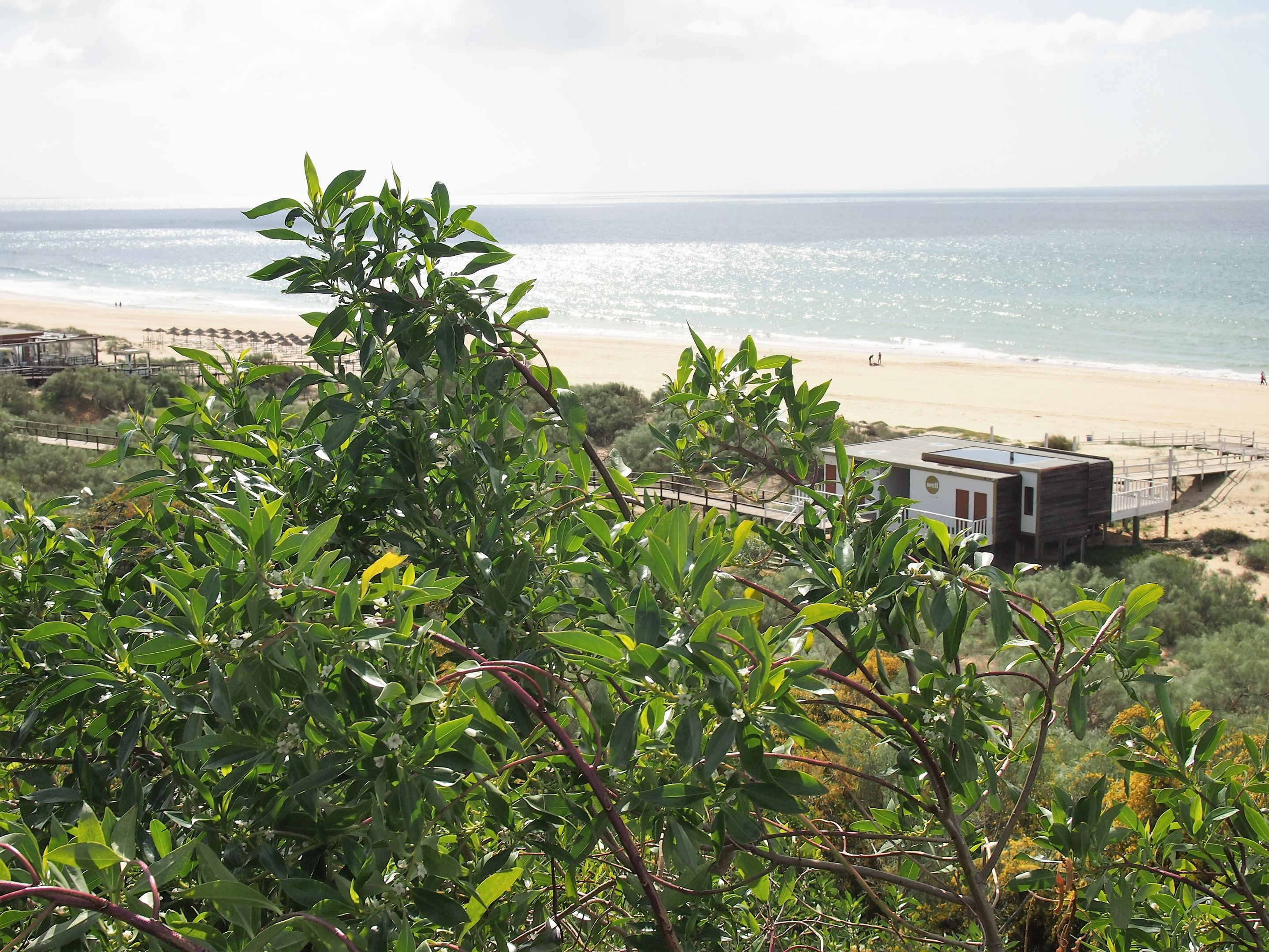 Praia Verde, Algarve