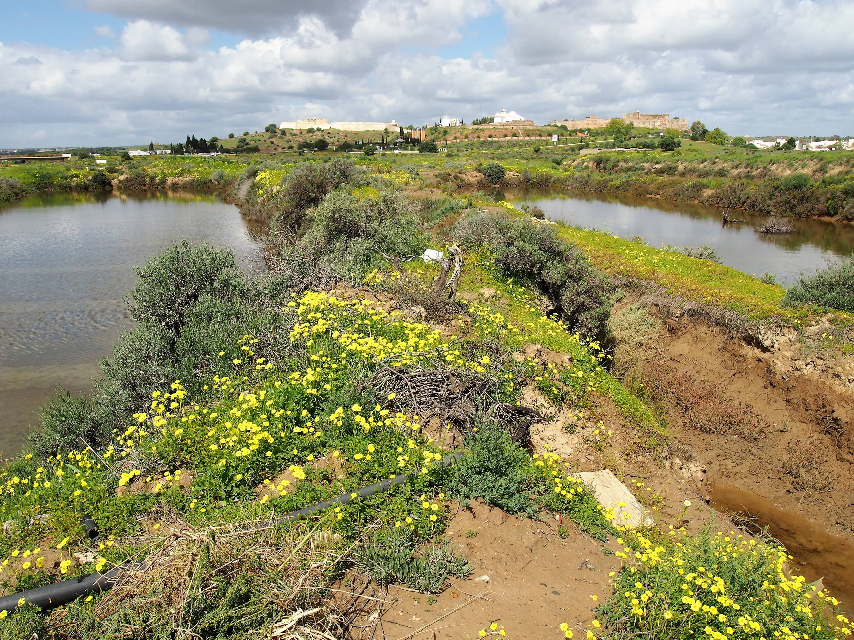 Salt pans at Castro Marim, with the Fort and the Castle in the background.