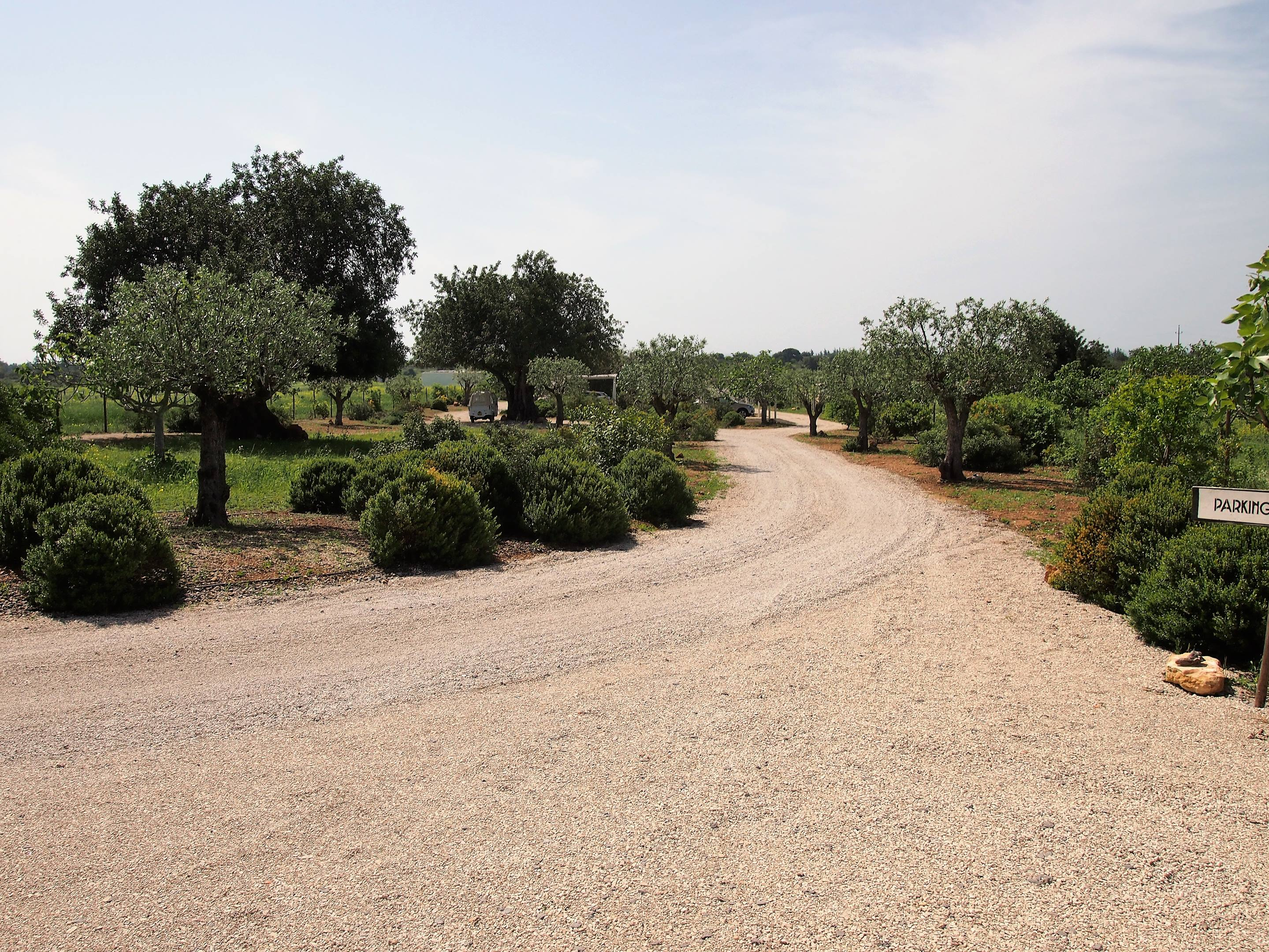 The grounds of Pensão Agricola, near Tavira, Algarve