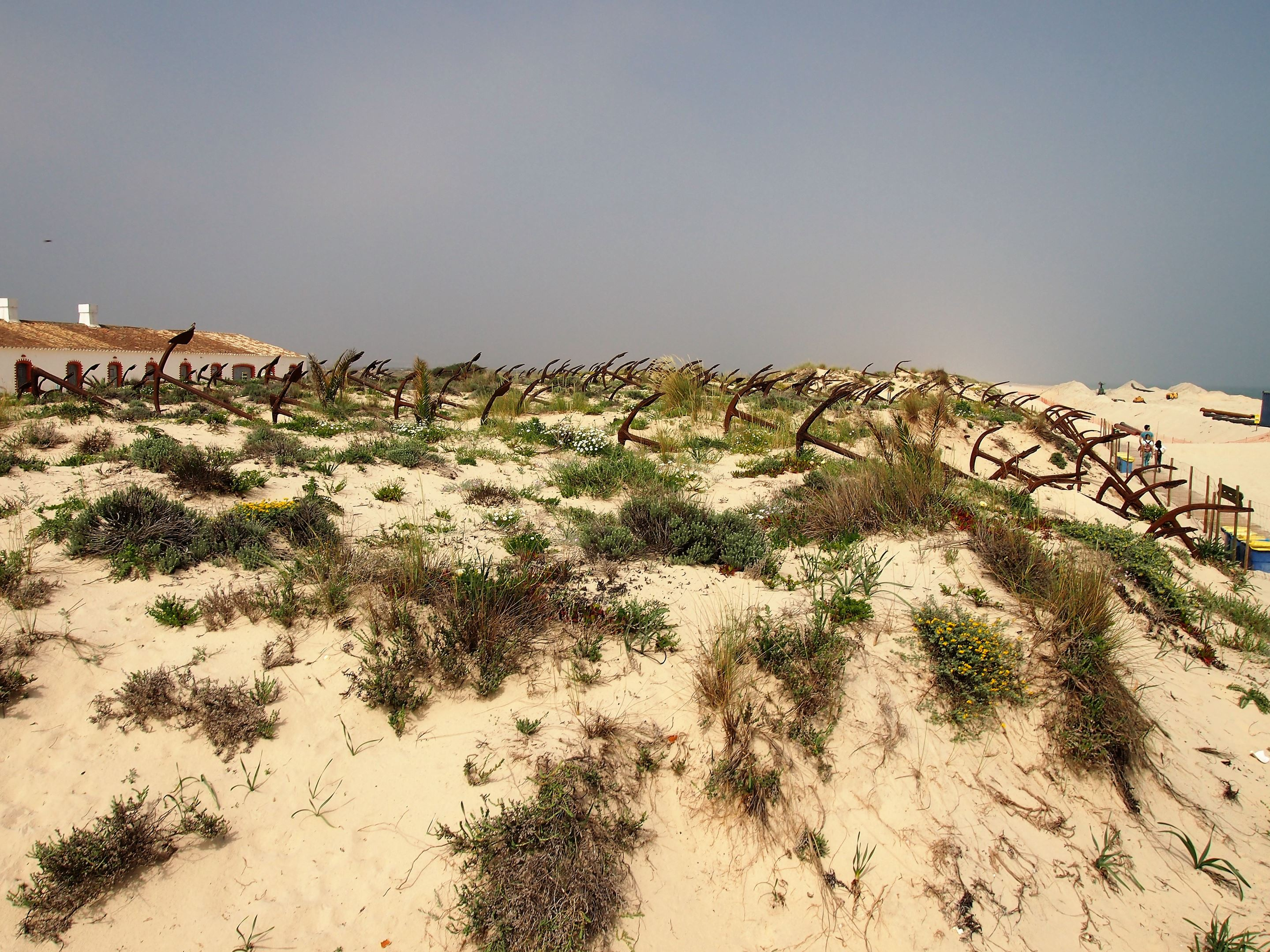 Dating from 1966, this is the Anchor Cemetery at Praia do Barril, Tavira which commemorates the once thriving tuna fishing industry.