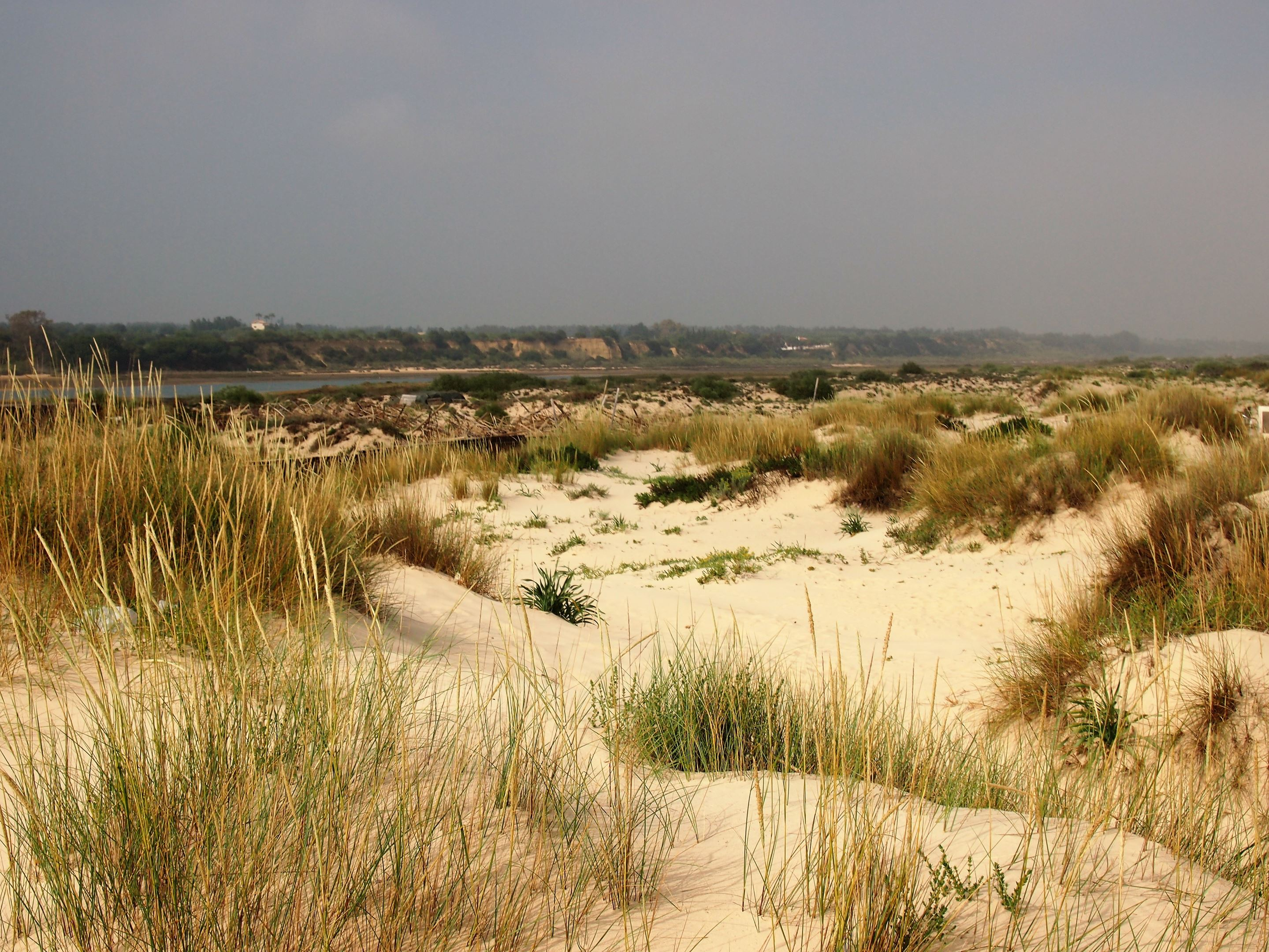 The Ria Formosa at Ilha de Cabanas