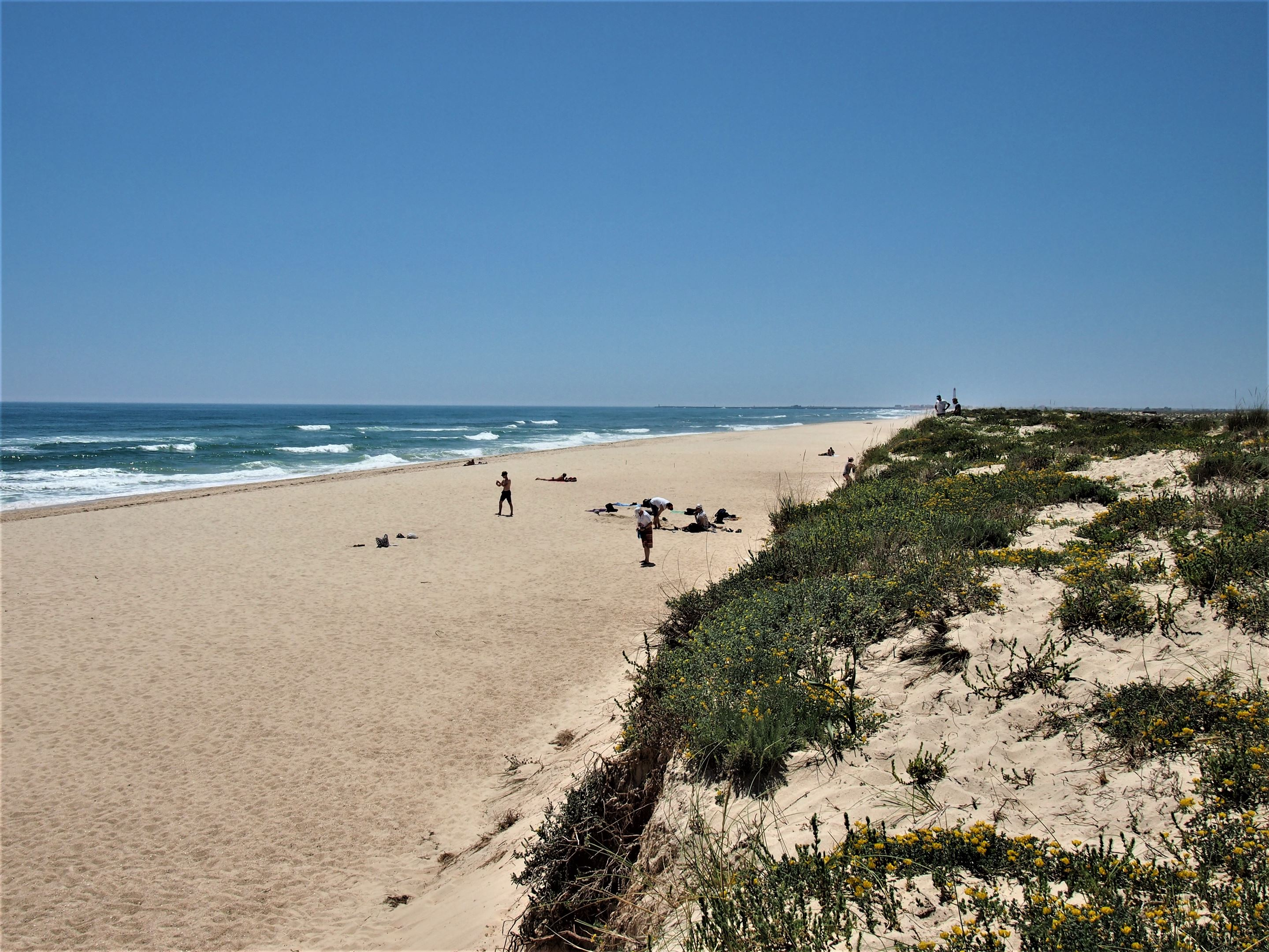 Praia da Culatra, en Olhão, mirando hacia el oeste