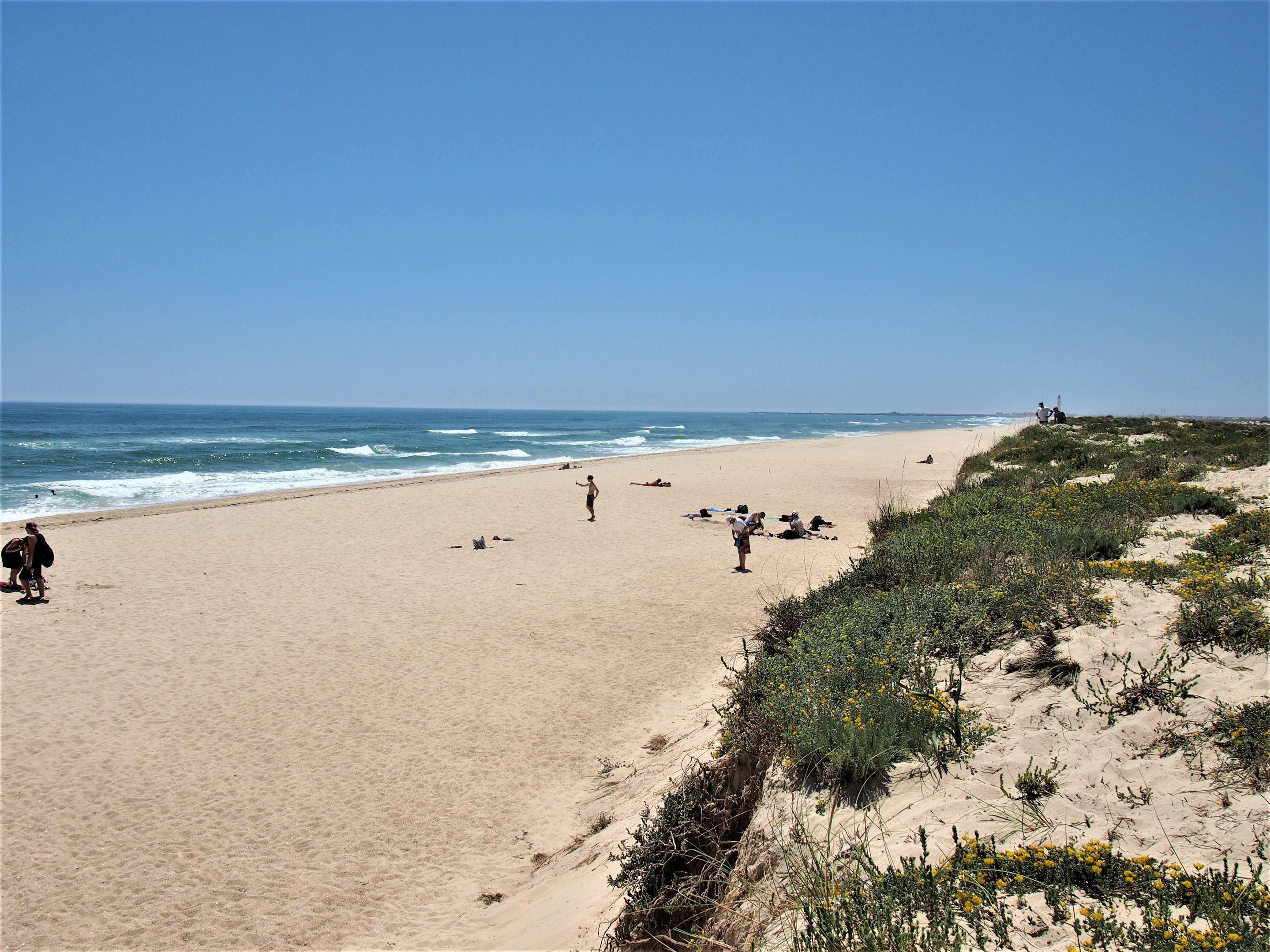 Praia da Culatra, on Culatra Island, near Olhão