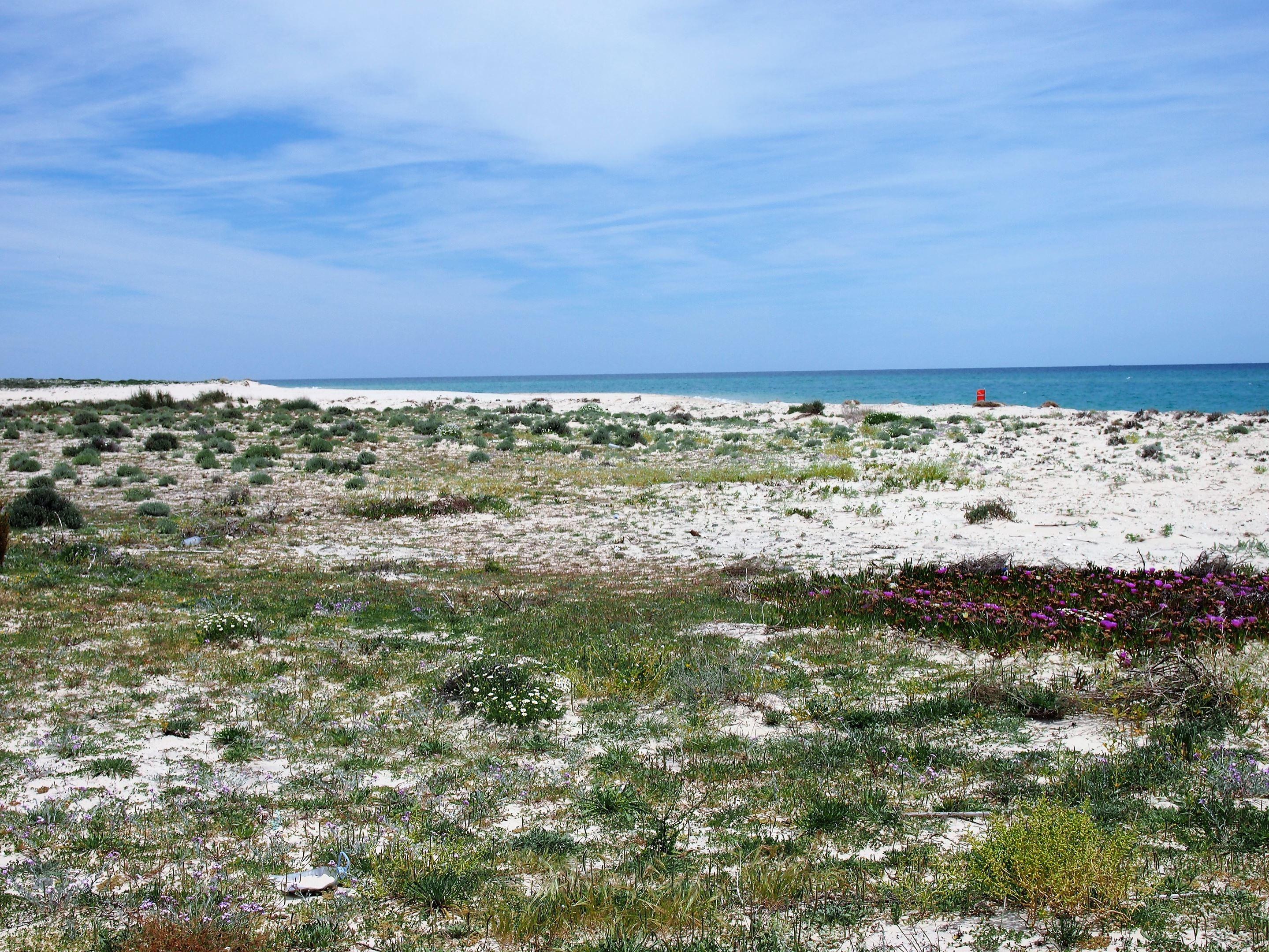 Ilha da Fuseta, com vista para o Oceano Atlântico.