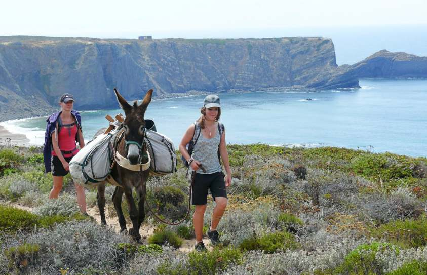 Donkey Hiking Algarve