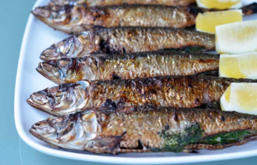 Portimão's Sardine Festival