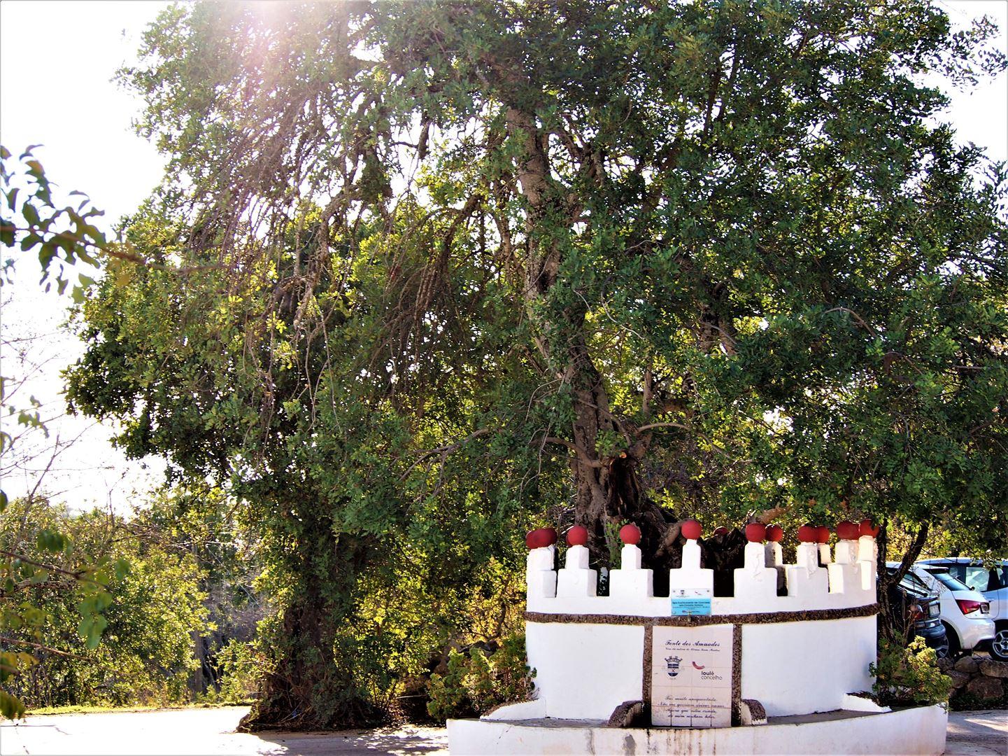 Otra vista de Fonte dos Amuados, a los pies de Rocha da Pena, Alte, Algarve
