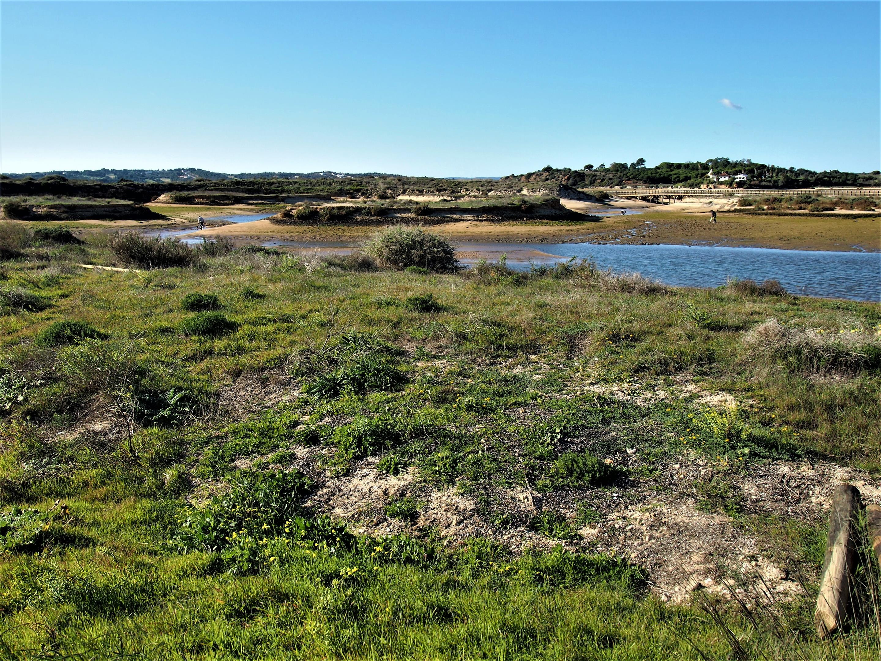 Ria de Alvor nature reserve, with the boardwalk in the background