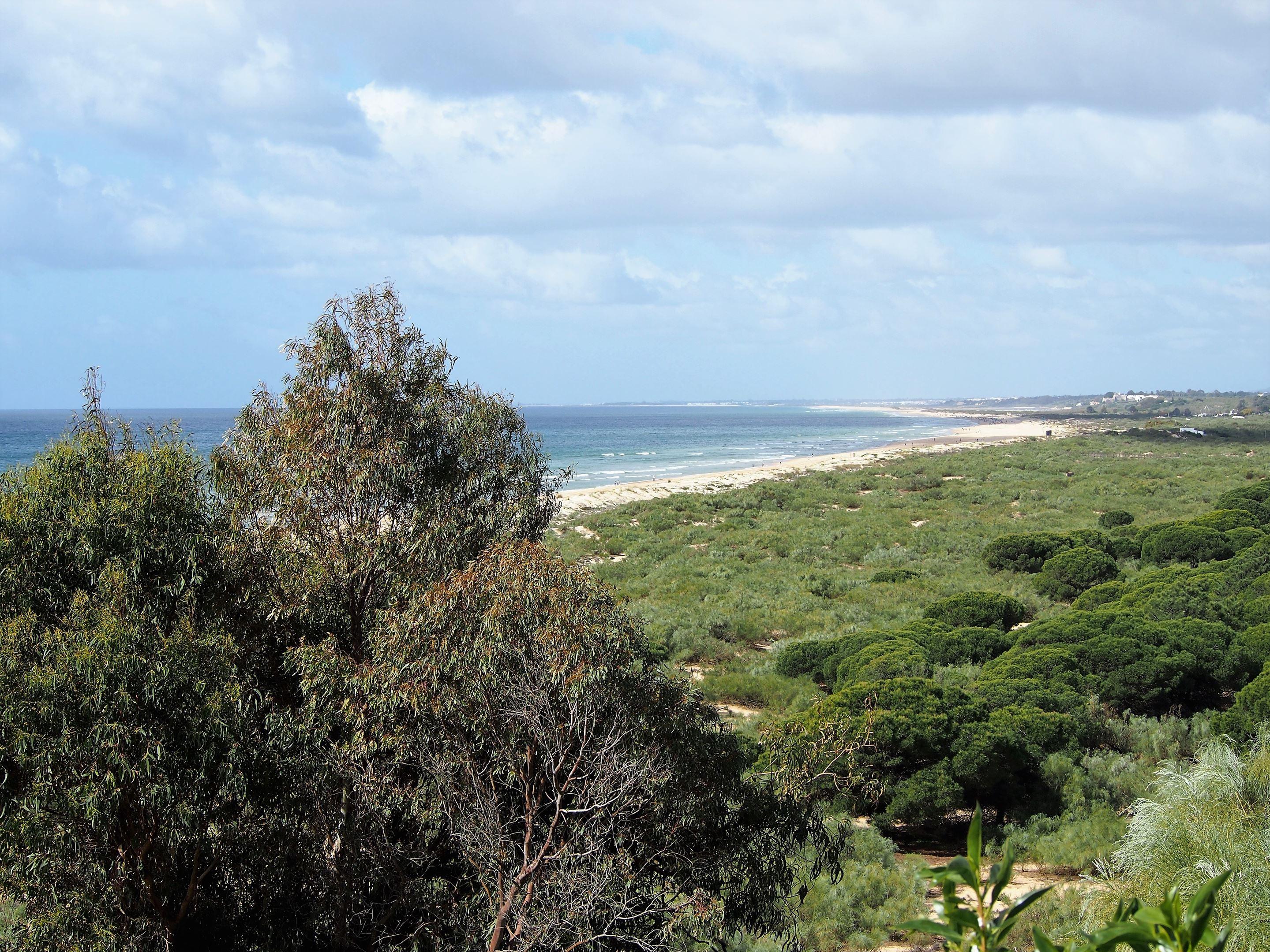 Praia Verde, mirando hacia el oeste hacia Praia da Alagoa