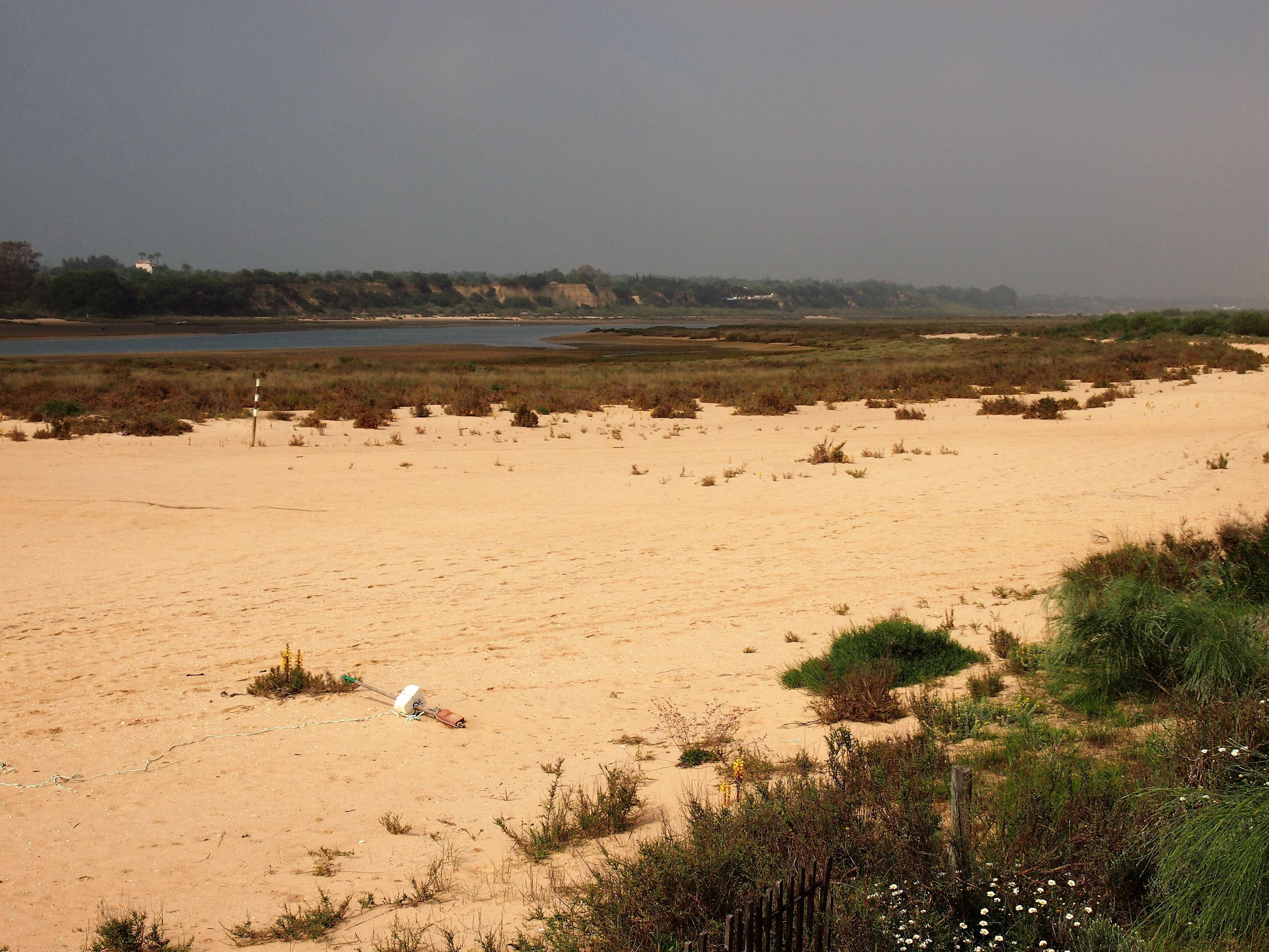 Ilha de Cabanas, Tavira