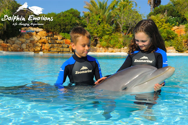Swimming with Dolphins, Algarve Portugal